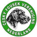 CFVN logo